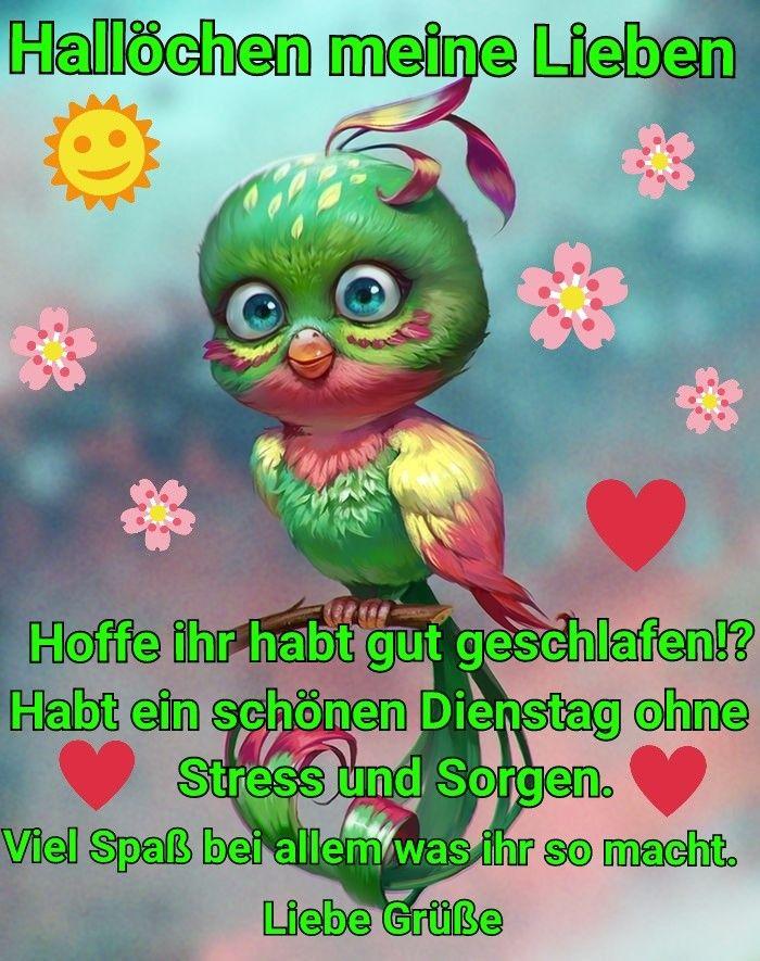 Pin Von елена валериевна Auf красивые картинки Guten