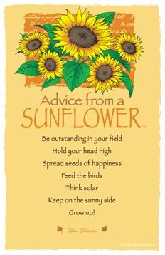 Advice from a Sunflower Frameable Art Postcard