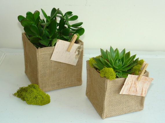 flowers plants succulent burlap planter pot cover birch bark tags rustic wedding burlap favor gift bags wood clip burlap vases