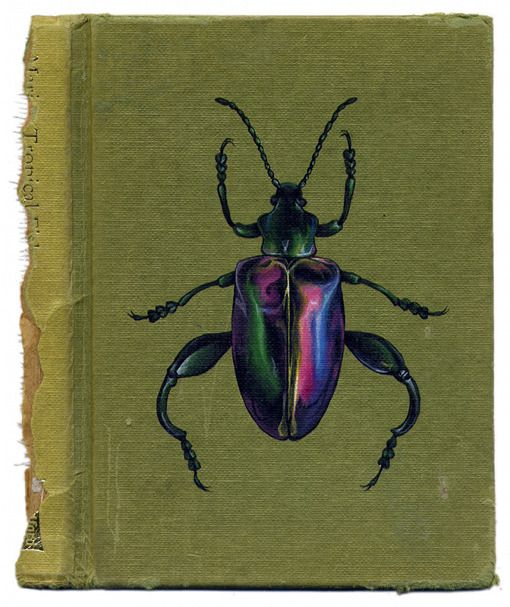 Rose Sanderson: Books Covers, Vintage Books, Rose Sanderson, Artists Rose, Books Art, Beautiful Bugs, Artists Books, Beetles Books, Old Books