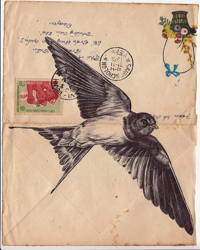 Birds Illustrated on Vintage Envelopes by Mark Powell