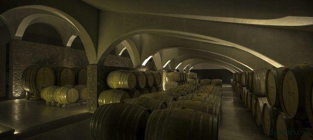 Дизайн аргентинской винодельни