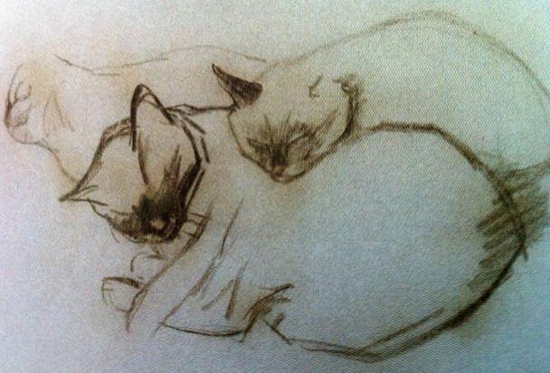 Steinlen  1920  3 Sleeping Siamese Cats  Charcoal  KattenKabinet