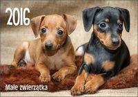 Kalendarz 2016 KA 1 Małe zwierzątka