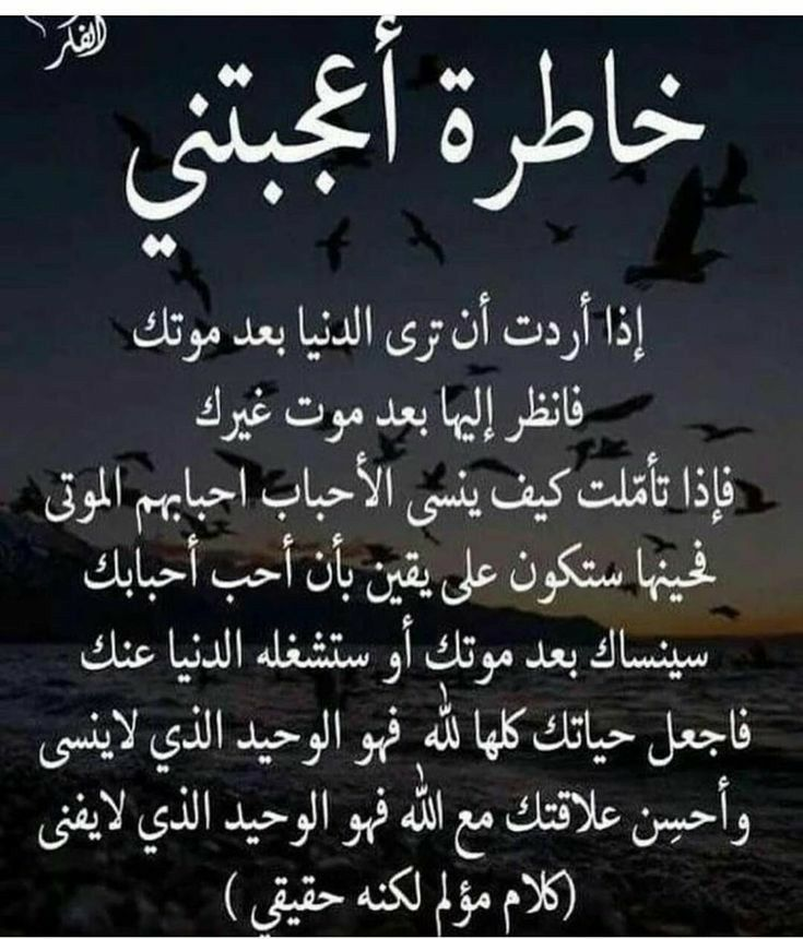 Pin By زعيمة19 On Red Roses Funny Arabic Quotes Quran Quotes Muslim Quotes