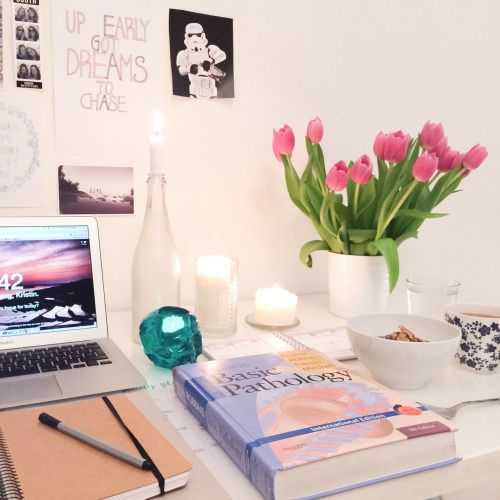 studydiaryofamedstudent: The flowers keep brightening my mornings, a bit of summer inside while it's slowly getting colder outside going thru pathoma videos and some chapters in Robbins. Would be nice to hear what you are studying today? Keep up the good work peeps!