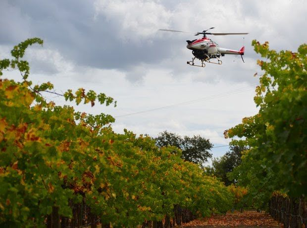 Yamaha Demos Agricultural RoboCopter, But Humans Can't Unleash It Yet - IEEE Spectrum