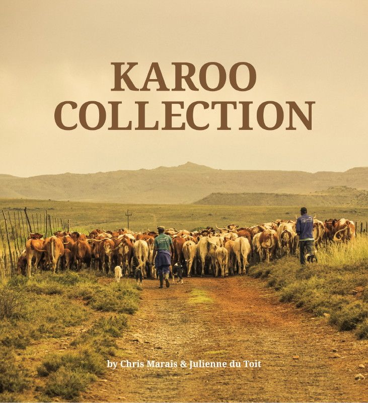 Karoo Space eBookstore Goes Live!