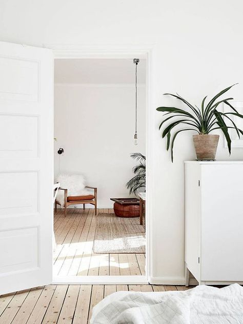 white with plant accents