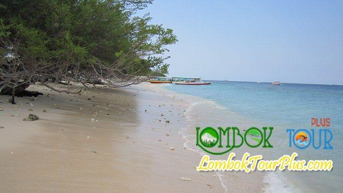 Alam yang indah dan menakjubkan yang ada di Lombok sampai saat ini semakin banyak dikunjungi wisatawan, karena objek di Lombok semakin memiliki keindahan yang sangat luar biasa :) Yuk lihat di http://lomboktourplus.com dan jangan lupa untuk mengunjunginya yah :)