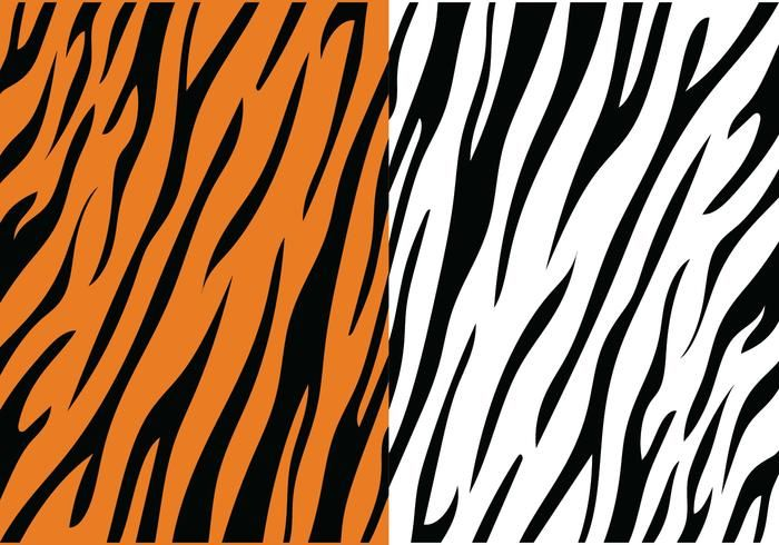 44+ Tiger without stripes clipart ideas