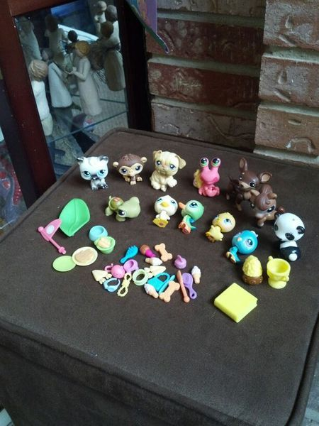 Lots and lots of **Littlest Pet Shop**