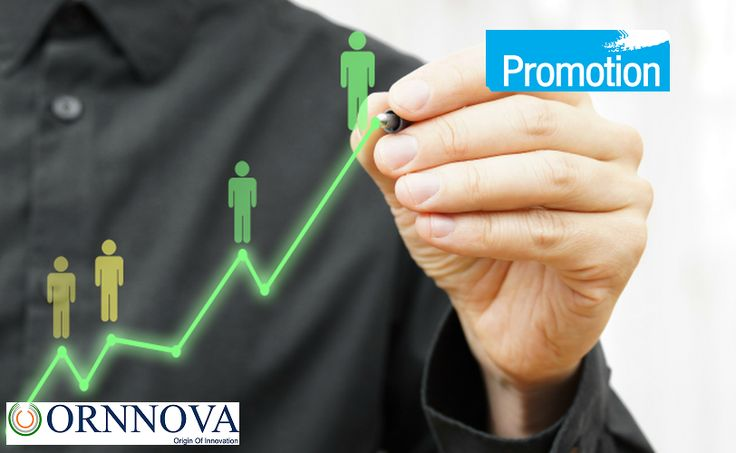 The real zeal in any #product or #service promotion is the perfect timing to launch a #perfect plan for the #promotion.