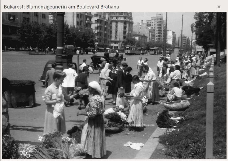 Florărie, Bucuresti, mai 1941