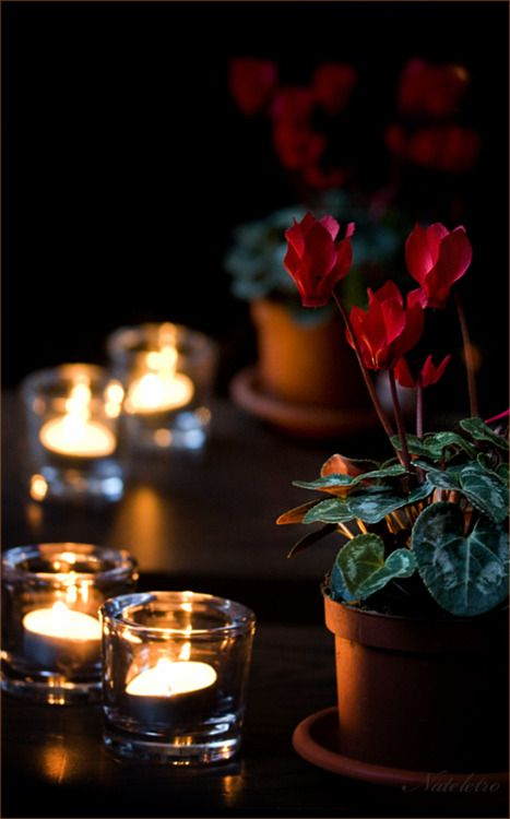17 best images about romantic style on pinterest Best candles for romantic night