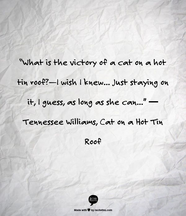 Tennessee Williams, Cat on a Hot Tin Roof-- One of my favorite movies