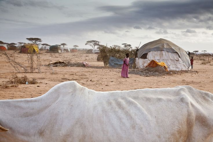A photo gallery of work by Brendan Bannon who recently visited the crowded refugee camps in Dadaab, Kenya. The refugees are fleeing the violent conflict in Somalia and the devastating effects of ongoing drought and lack of food.