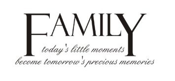 Family: today's little moments becomes tomorrow's precious memories Vinyl wall art Inspirational quotes and saying home decor decal sticker steamss: Amazon.com: Home & Kitchen