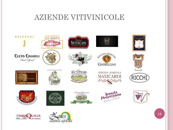 Più di 80 etichette tra le quali scegliere   -   BICER PIN BOUTIQUE GOURMET - Via Cialdini, 5 - Castelvetro di Modena (MO) - enoteca@visitcastelvetro.it