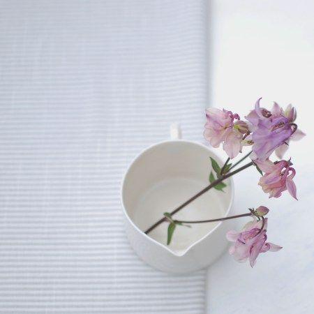 Beautiful aqualigia flowers resting inside a thrown white porcelain jug. Artist Helen Button