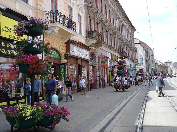 Miskolc, 2005