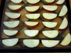 How to Dry Apples in a Dehydrator: Drying Apples in a Dehydrator