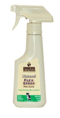 Natural Flea and Tick Spray For Cats - http://www.bunnybits.org/natural-flea-and-tick-spray-for-cats/