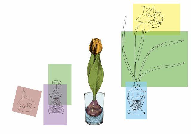Ilustraciones y dibujos: Estos son los últimos trabajos que he hecho.