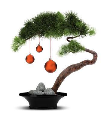Martine: Japanische Weihnachtstraditionen!