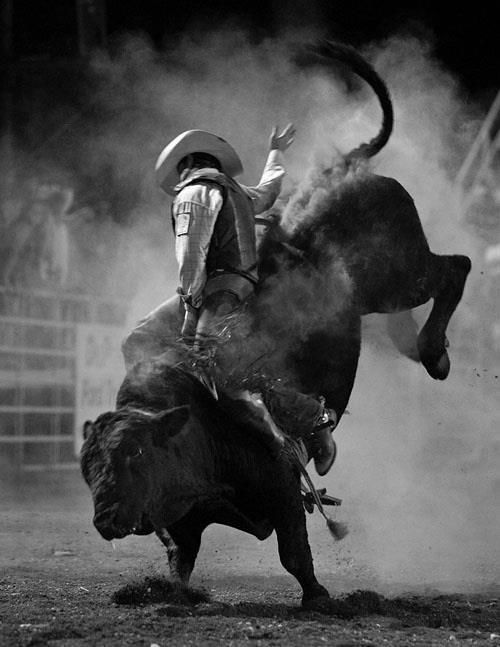 Awesome Black & White Bull Riding picture. (But I don't know who the rider is? Anybody know??)