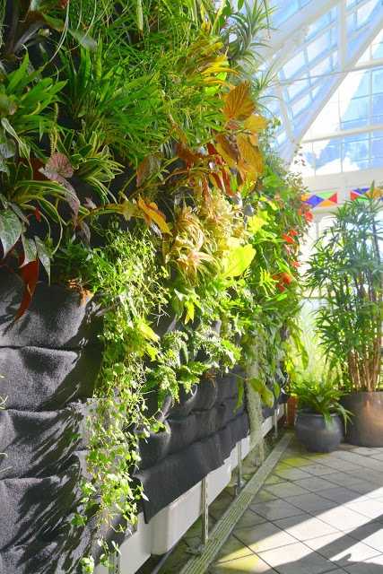 This is a great idea. Plants On Walls Vertical Gardens