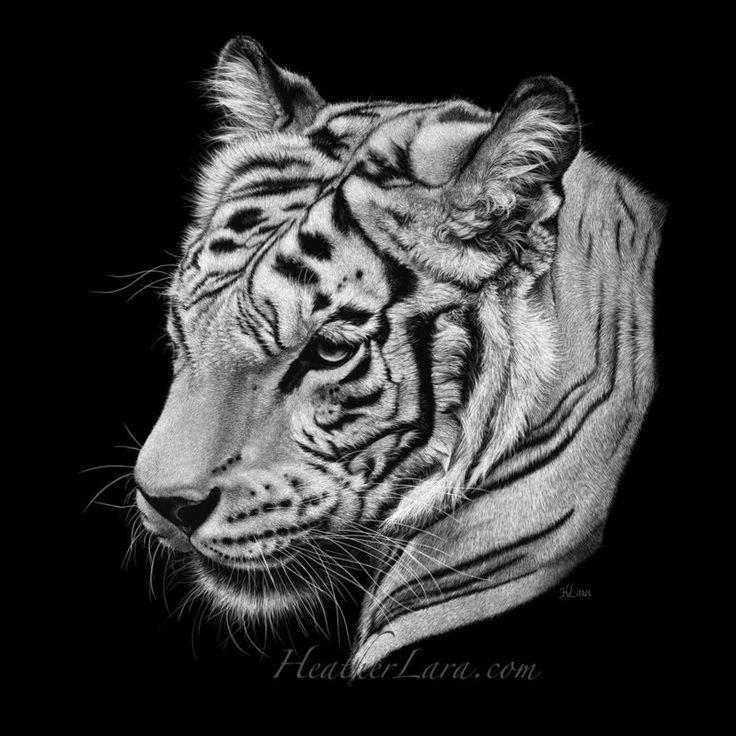 Животные черно белые картинки для гравировки