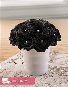 Flowers: Mysterious Black Roses in Vase!