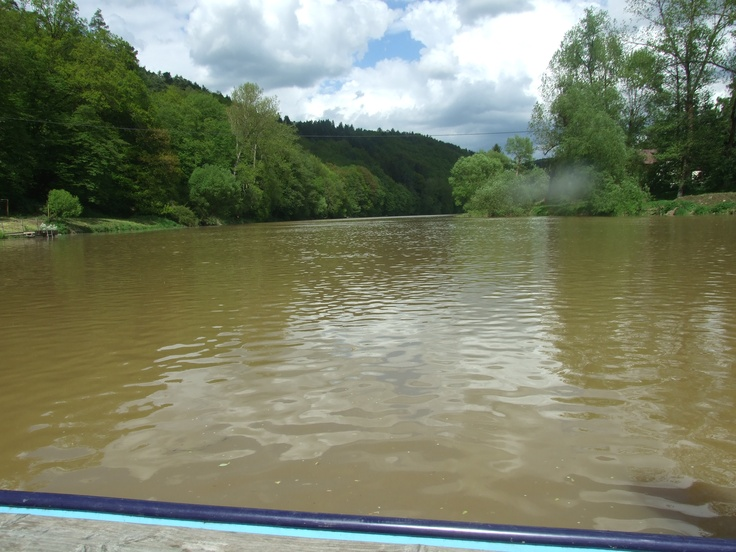 Sázava river walley from a board of rowing boat at the ferry from Zlenice to Baštírna