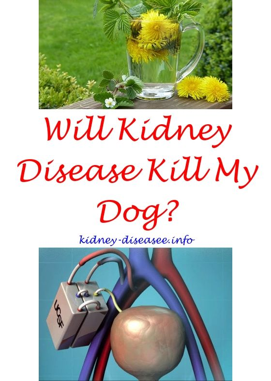 chronic kidney disease diet - what is the treatment for kidney infection.what is renal failure 4595561194