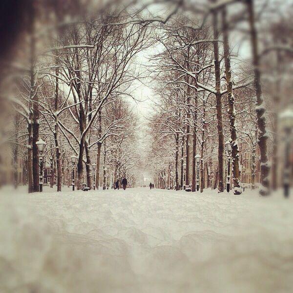 Lange Voorhout winter