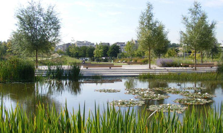 Galería de Paisaje y Arquitectura: Martin Luther King, un parque ecológico integral y conector de barrios - 20