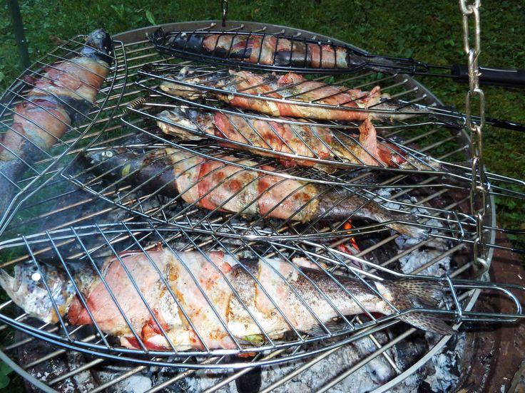 """Forelle wird üblicherweise im Kaltrauch, """"Blau"""" oder auch gebraten auf """"Müllerin Art"""" zubereitet. Alternativlos? Es geht auch anders. Forelle grillen a la Black Forest Style: Eine edelrustikal anmutende Neu-Interpretation für einen traditionsreichen Fisch. Diesmal nicht freihändig kochen sondern einfach grillen! Innen aromatisiert mit unkonventioneller Kräutermischung, außen mit den regional-spezifischen Raucharomen des Schinkenspecks und der Holzglut aus dem Schwarzwald."""
