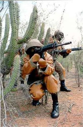Defenders of Caatinga.   Brazilian army's 72nd Motorized Infantry Battalion Is an elite unit of the Brazilian Army based in Petrolina, being the only unit of the Brazilian Army to train the warfighter to the operating environment of Caatinga and Savanna region
