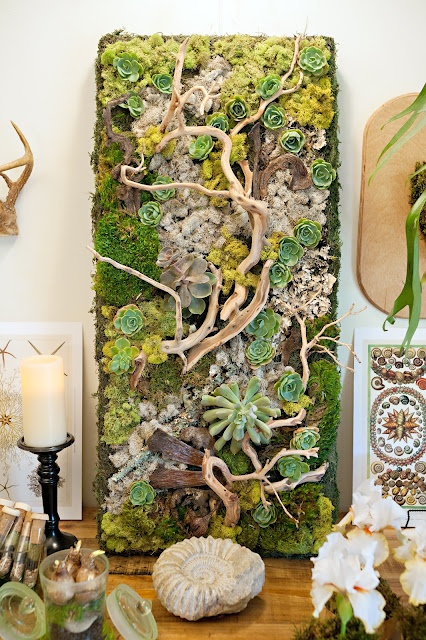 Kim Fisher Designs- succulent /moss wall panel- perfect for a porch! You can do this!!! I'll show you!