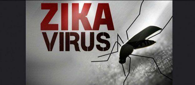 Zika Virus – 4 Things Mainstream Media Isn't Telling You | Homesteading News And Preparedness Tips by Pioneer Settler at http://pioneersettler.com/zika-virus-news-2/