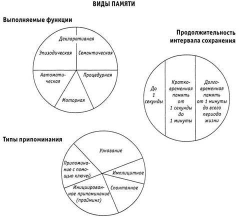 Классификация процессов памяти Психология критического мышления (fb2) | Либрусек