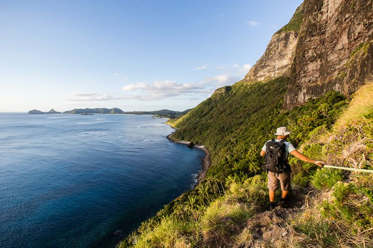 Descending Mt Gower after a long day | Lord Howe Island