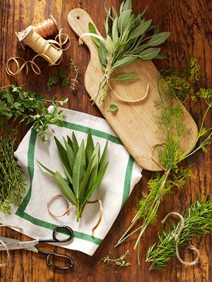 How to Dry Herbs - Enjoy home-grown summer flavor all year by learning how to dry herbs! Find various methods and helpful tips for how to dry fresh herbs, and how to make a fragrant fire starter after drying fresh herbs.