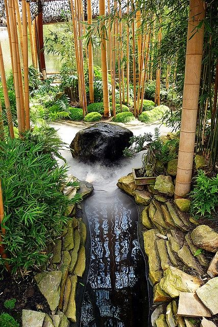 zen garden with bamboo pond japanese gardening
