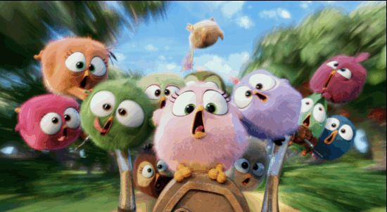 New trending GIF on Giphy. cute bike fast motorcycle riding angry birds the angry birds movie hatchlings. Follow Me CooliPhone6Case on Twitter Facebook Google Instagram LinkedIn Blogger Tumblr Youtube