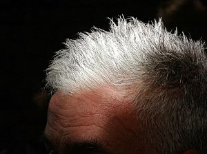 Natural supplements grey hair   -   http://www.healthyandnaturalworld.com/natural-supplements-for-treating-premature-grey-hair/