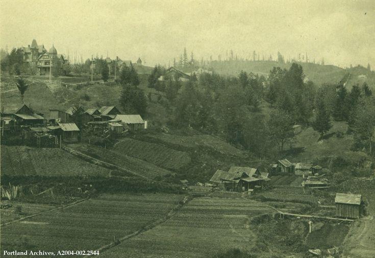 Vintage Portland Historical Images Oregon Historical