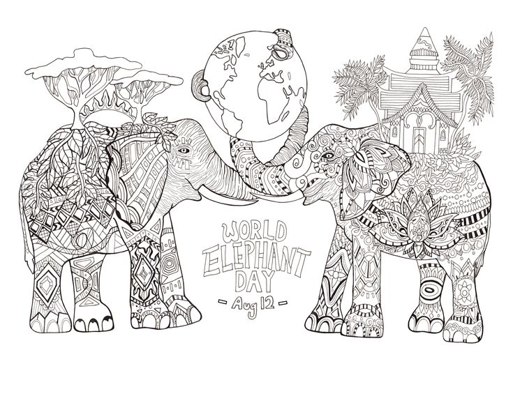 Elephant Zentangle For World Day Animal Coloring PagesColoring