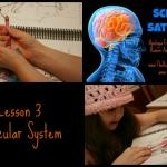 Science Saturday: Apologia's Anatomy & Physiology (Lesson 3)